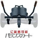 SDL【sdrive_d19】 バランススクーターカスタムパ