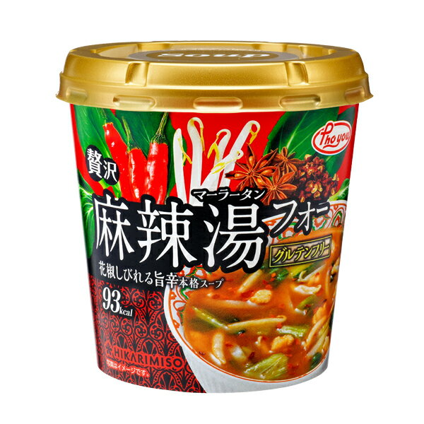 Phoyou 贅沢麻辣湯フォー×6カップ