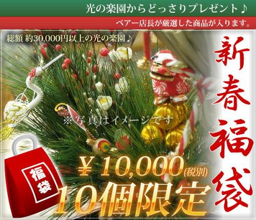 光の楽園 人工観葉植物 福袋10,800円!あの人へのプ...