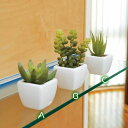 ◆楽天ランキング入賞◆可愛い人工観葉植物◆新築祝い・開店祝い・誕生日などのギフトに。オシ...