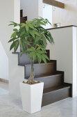 光触媒観葉植物 光の楽園 ロイヤルパキラ 高さ1.35m【インテリア 人工観葉植物 フェイクグリーン 大型 送料無料】