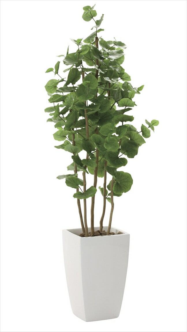 光触媒 人工観葉植物光の楽園 アーバンシーグレープ1.8mインテリア フェイクグリーン:花と観葉植物の専門店 光の楽園