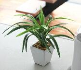光触媒 観葉植物 光の楽園ミニドラセナポットインテリア ミニグリーン 人工観葉植物 幸福の木 人工植物 フェイクグリーン
