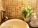 光触媒 観葉植物 光の楽園 ミニグリーン 選べる3タイプ【インテリア ミニグリーン 人工観葉植物 人工植物 フェイクグリーン 造花】