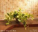 光触媒加工の造花と人工観葉植物専門店光触媒 観葉植物 光の楽園 チャーリーポット