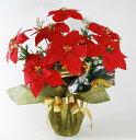 毎年飾れるポインセチア♪クリスマスのオブジェやプレゼントとしてもオススメ☆忙しいあなたに...
