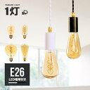 【LED電球付き】ダクトレール用 ペンダントライト 1灯 ソ