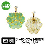 ダクトレールスポットライトE11照明器具(白)