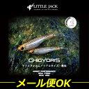 ◆ソルト&フレッシュの多魚種を攻略ルアー ソルト バス ミノー シャッドリトルジャック LITTL...