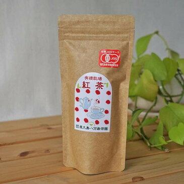 屋久島のやさしい有機栽培紅茶
