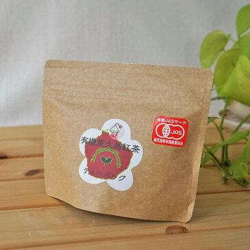 屋久島のやさしい有機栽培紅茶ティーバッグ