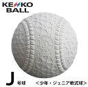 ナガセケンコー 野球 少年軟式 ボール J号 ケンコー 1ダース 12球 (箱なし) JHP1