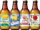 【宝酒造】宝CRAFT 宝クラフトチューハイ 東海エリアもっ