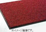 【代引き不可商品】【時間指定不可】TERAMOTO/テラモト トレビアンHC 赤 600×900 MR-028-040-2