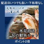【送料無料】氷見漁港水揚げ旬の鮮魚セット