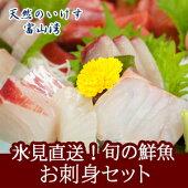 【送料無料】天然のいけす富山湾氷見漁港水揚げ旬の鮮魚お刺身セット