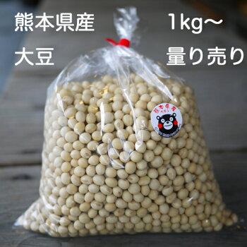 熊本の大豆