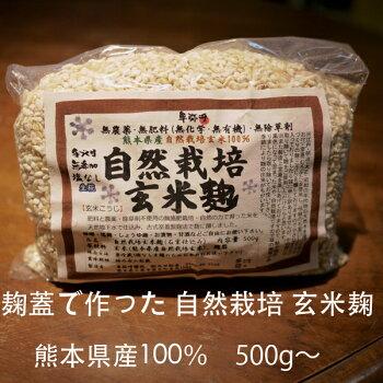 自然栽培玄米麹500g〜