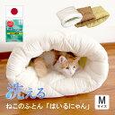 ねこのおふとん「はいるにゃん」 猫 ネコ ペット ベッド 冬 洗える 洗濯可能 あったか 布団 ふとん フトン 寝具 クッション マット ドーム型 小型犬 キャット ペット用 Mサイズ 1