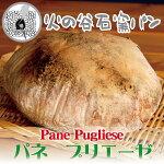 石窯焼きパン・パネプリエーゼ/天然酵母/ビール酵母/イタリアパン/プーリア