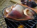 ■歯ごたえもあり、風味も抜群。大自然が育む、新鮮な味を存分にご賞味下さい。活ホッキ貝(天...