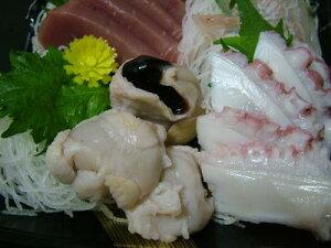 ■タコの口は最小で最大の珍味です、高蛋白、低脂肪のヘルシー食品です。タコトンビカラス(ボイ...