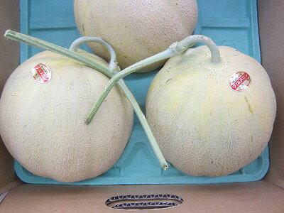フルーツ・果物, メロン  116kg-2