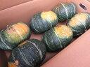 かぼちゃ みやこかぼちゃ ミヤコカボチャ【 1.8kg前後-6個】「送料無料」お中元 贈答 ギフト