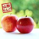(予約)(早割)(送料無料)【たっぷり!てんこ盛り10kg】...