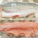 サーモントラウト(皮付)トリムC1枚(約700g〜1000g)生食用/お刺身/さーもんとらうと/torauto