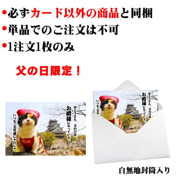 父の日 お父さんご苦労様(猫とお城)【単品注文不可】必ずカード以外の商品と同梱下さい【after20130610】