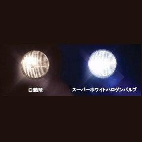 05-08-0209SP武川スーパーホワイトハロゲンバルブTB812V35/35WXRバハ/アドレスV100/ベンリィCD125/ビーノ