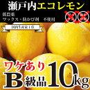 【広島レモン】レモン生産数日本一の広島県からお届け致します。皮まで食べられる安心エコレモン2kg(13個-25個)