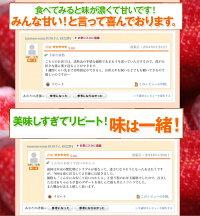 福岡産博多あまおうDX−2P送料無料!