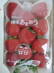 (送料無料)イチゴ好きの方に。フルーツひろは(送料無料)博多あまおうDX-1P\1000(税込み)