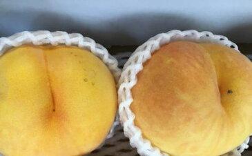 黄金桃2玉