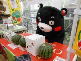 フルーツひろは熊本/石川スイカ