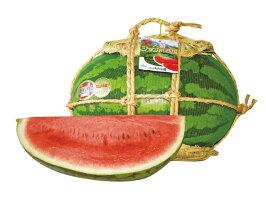 フルーツひろは入善ジャンボ西瓜