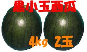 フルーツひろは黒小玉西瓜4Lサイズ2玉入り