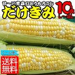 とっても甘くてジューシーな「嶽(だけ)きみ」L〜2Lサイズ10本入クール便代サービス!