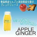 アップルジンジャー1本