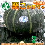秋の味覚「栗こかぼちゃ」2個入甘くてホクホク★