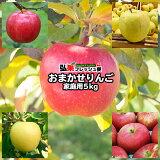 【送料無料】青森 りんご おまかせりんご 約5kg前後【家庭消費用】【訳あり 青森りんご】【りんご 送料無料】【りんご 5kg】【青森リンゴ 訳あり】【りんご 訳あり 5kg】
