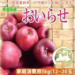 青森県産りんご「おいらせ」家庭消費用14〜23個入