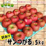 青森県産「サンつがる」家庭消費用20〜25個入☆