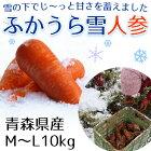 雪の下人参10kgM〜Lサイズ送料無料青森県産人参ニンジン