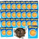 送料無料 TERRY'S テリーズ チョコレート オレンジミルク 157g 24箱セット