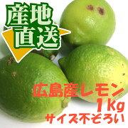 【広島県産国産レモン】広島レモン1kg(サイズ不ぞろい)【豊島合同回漕店】