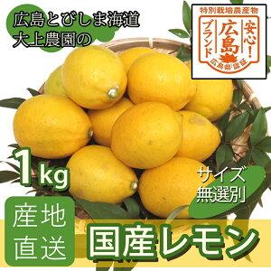 【産地直送】 広島産 レモン ...