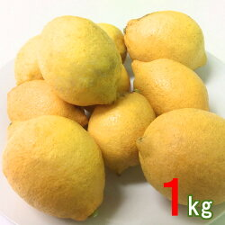 産地直送広島大長産レモン1kg広島産レモン国産レモンなかだい農園